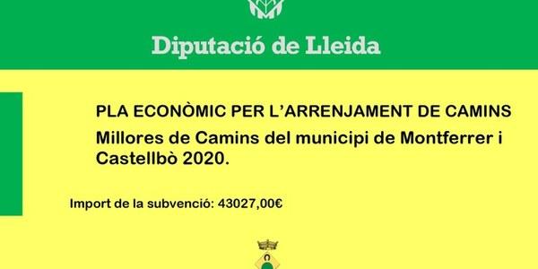 Subvenció de Diputació de Lleida